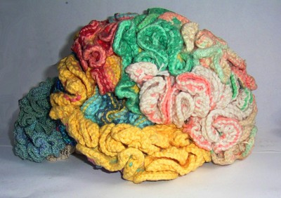 Knitted_brain