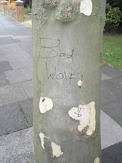Bad_wolf