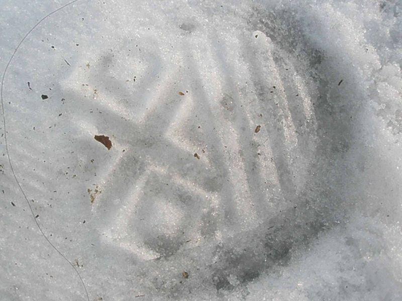 Footsteps15