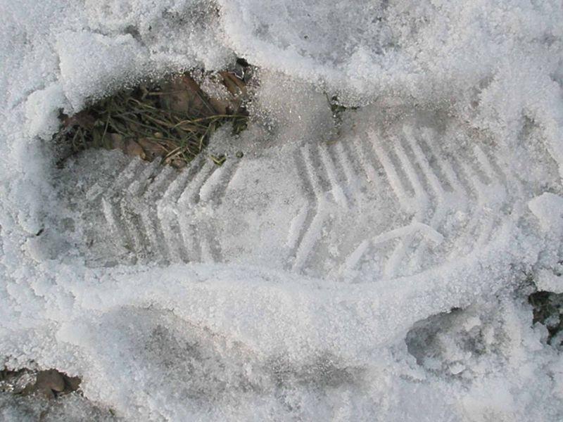 Footsteps16
