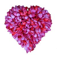 pink, red and fuchsia metallic heart made of balloons (C) Susie Macmurray