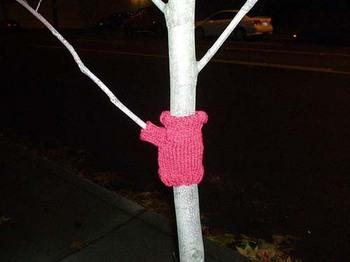 Tree sweater, Seattle (c) Erika